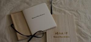 rêves à fleur de terre / livre d'artiste
